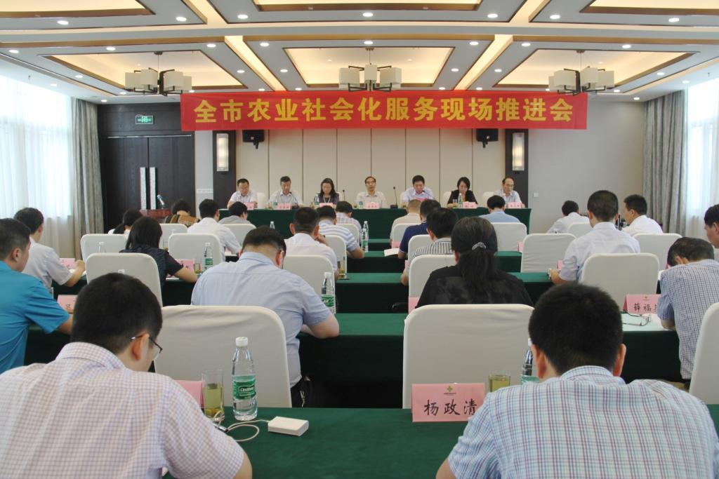 市供销社组织召开全市农业社会化服务现场推进会
